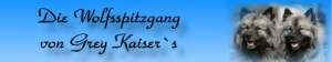 Banner_die_Wolfsspitzgang_Grey_Kaiser-s
